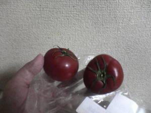 fruittomato.JPG